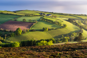 Moor and farmland in spring, Exmoor National Park, Devon, England, United Kingdom, Europe