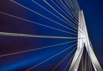 Fotorollo Rotterdam Rotterdam Erasmusbrücke Skyline Nacht