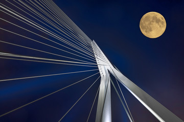 Fotorollo Rotterdam Rotterdam Erasmusbrücke Mond Nacht