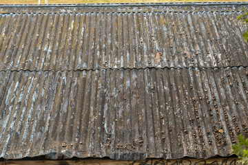 Rusty corrugated tin roof