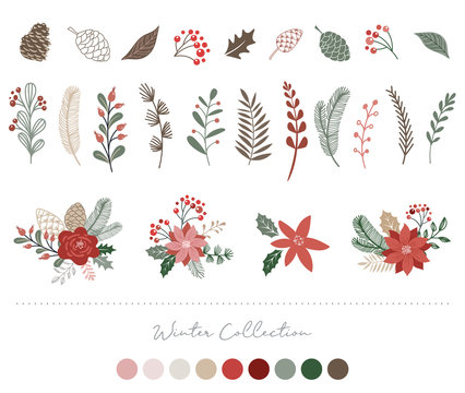 Botanical Christmas, Xmas elements, winter flowers, leaves, birds and pinecones isolated on white backgrounds.