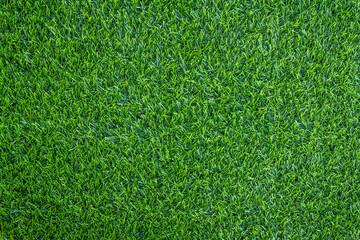 green grass background texture Wall mural