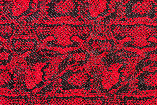 Texture of synthetic red snake skin