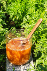 Glass of fresh carrot juice on rustic table