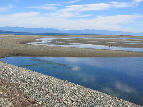 Reflective pools at Parksville Beach