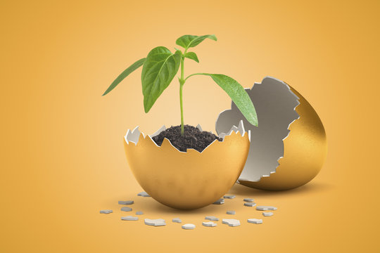 3d rendering of small green sprout growing from black soil in golden shell of golden egg that just hatched.