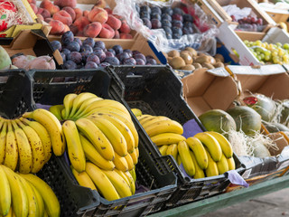 different fresh fruits in a grocery store