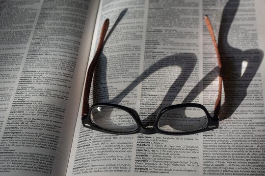 Una pausa en la revisión del diccionario