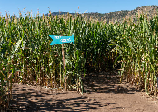 Keep Going Sign Inside Corn Maze on a Blue Sky Fall Day