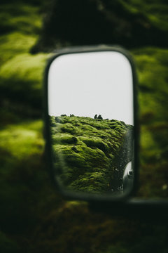 Moss covered field reflected in side view mirror