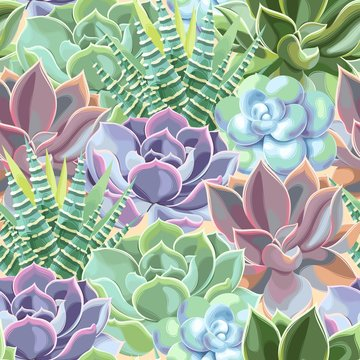 Vector seamless pattern with high detail succulent