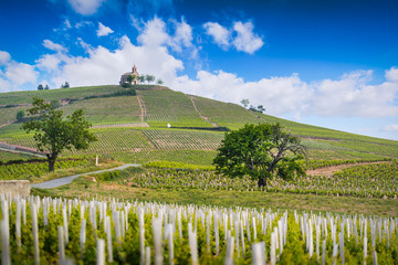 Church of Fleurie village and vineyards of Beaujolais, France