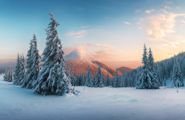 Wall Murals Blue jeans Fantastic orange sunset in snowy mountains. Picturesque winter scene with snowy trees and glowing mountain peak
