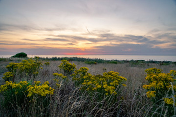 sunset over field with coastline in background