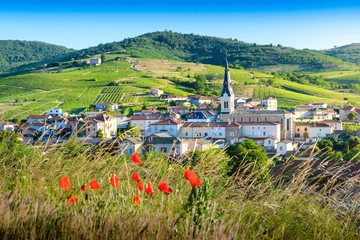 Le Perreon village at morning, Landscape of Beaujolais, France