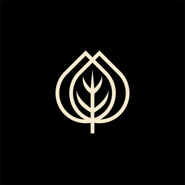 leaf line outline monoline structure sprouts icon symbol shape logo design graphic minimalist