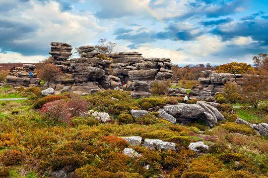 Brimham Rocks. Yorkshire, England, UK