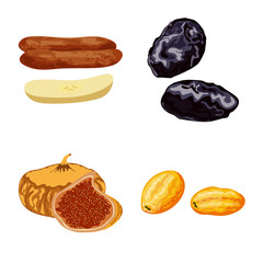 Fototapete - Isolated object of fruit and dried sign. Collection of fruit and food stock vector illustration.