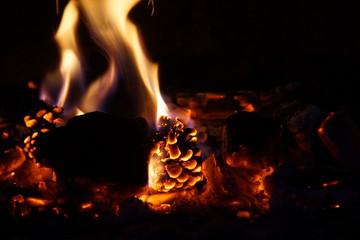 Pommes de pains et flammes