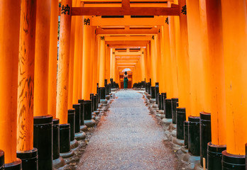 One of the main highlight in Japan and the most popular destination. This is a corridor made of tori gates. Orange tunnel. In the end standing lady, she is wearing dress and holding white umbrella.