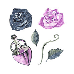 Bottle with essential oil of rose. Cosmetic, perfumery and medical oils. Watercolor set