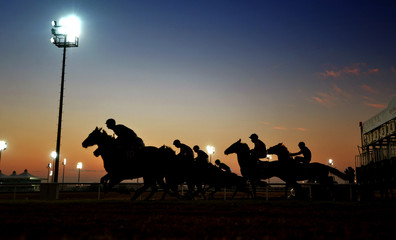 horse riders in silhouette to ahead the championship.