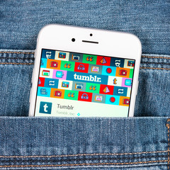 Silver Apple iphone in jeans pocket displaying Tumblr application. Tumblr is a microblogging platform and social networking website