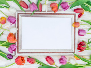 Colorful tulips around wooden frame in spring sunlights.