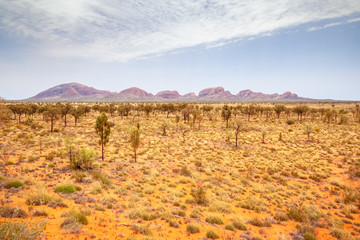 Photo Stands Melon landscape scenery of the Australia outback