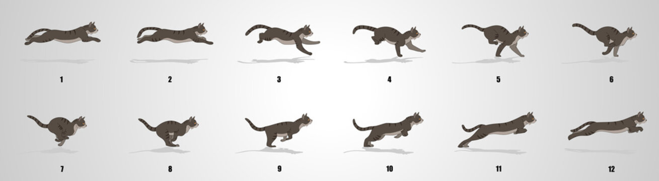 Cat Run cycle animation sequence