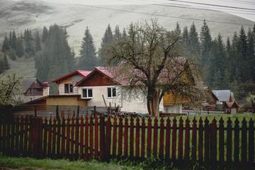 Fototapety na wymiar - Fototapeta24.pl
