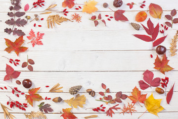 autumnal natural wooden background with autumn decoration