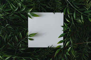 Wall Mural - Creative winter layout made of branches and leaves with paper card note. Flat lay. Nature concept