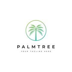 Coconut tree logo design.Palm tree icon