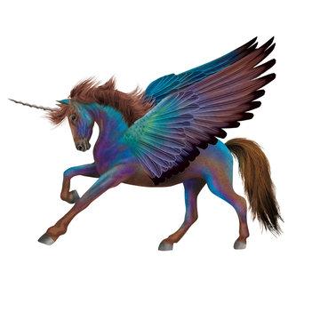 cheval, bleu, volant, aile, coloré, fantastique  , animal, étalon, isolé, noir, licorne, galop, course, amoureux des chevaux, chevalin, nature, courir, arabe, mammifère, ferme, sauvage, poney, crin, d