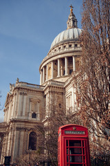 Telephone booth and tree near St Pauls Cathedral