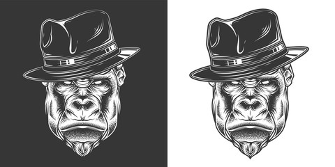 Original monochrome vector illustration. Evil gorilla head gangster in retro style hat. T-shirt or sticker design