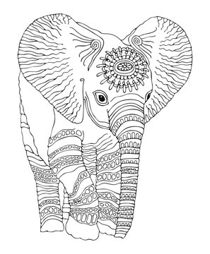 Hand drawn baby Elephant. Sketch for anti-stress adult coloring book in zen-tangle style. Vector illustration  for coloring page.