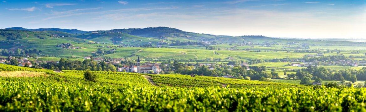 Panoramic landscape of vineyards and villages of Fleurie and Villié Morgon, Beaujolais, France