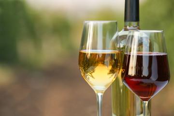Spoed Foto op Canvas Wijn Glasses and bottle of tasty wine in vineyard