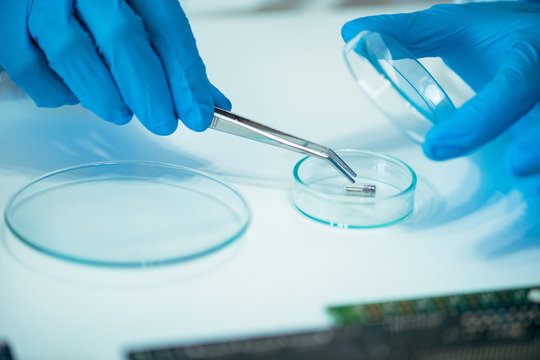 Technician Examining RFID Chip Implant