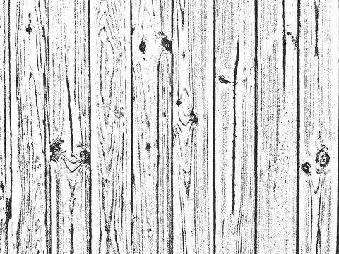 Distress old dry wooden texture. Black and white grunge background. Vector illustration