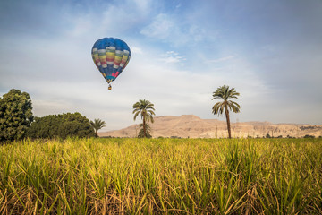 Poster Ballon Hot air balloon tourist rides over the valley of Kings, Luxor west bank, Egypt