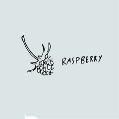 picture of raspberry, pencil drawing of a berry and an inscription