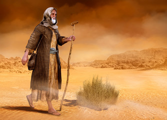 Moses walks through Sinai desert Exodus