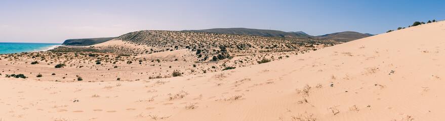Dune at Sotavento Beach, Fuerteventura, Spain