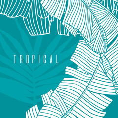 Tropical pattern with palm tree leaf and banana leaves. Beach vacation, label,  illustration with linear drawings for tourism and travel industry.  Hand drawn foliage.