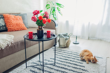 Interior of living room decorated with flowers on coffee table and cat lying on carpet and playing. Fresh roses