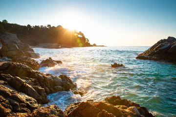 Fototapete - Summer tropical sunrise