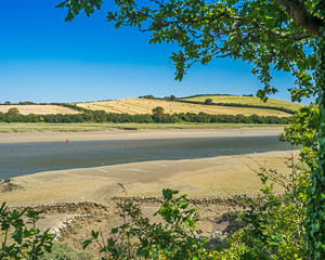 River Camel from the Camel Trail Cornwall England UK